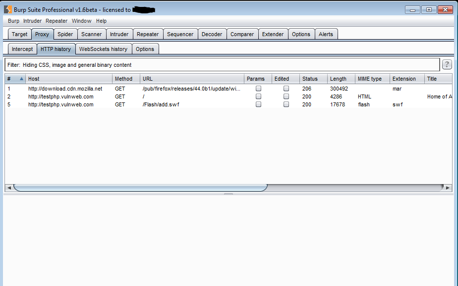 Penetration Test – Web Application Scanning – All things in